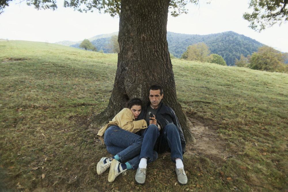 The Oak / Balanta